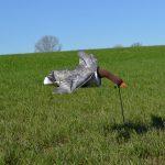 invallende windsock grauwe gans ganzenlokker
